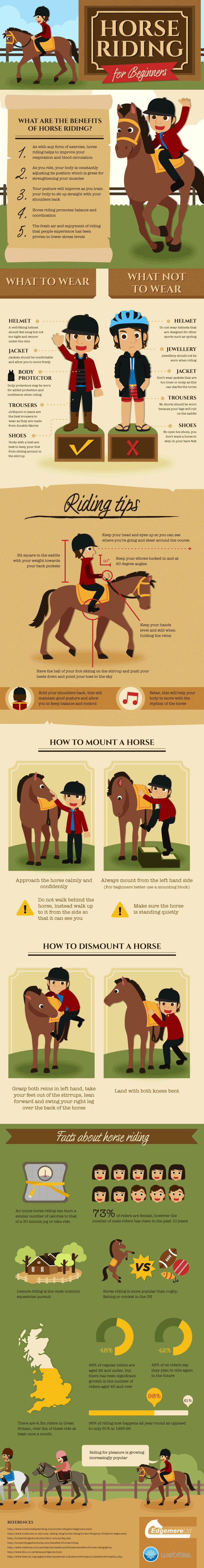 Edgemere Horse Riding For Beginners [infographic]