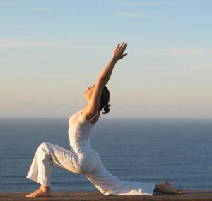 vinyasa yoga 300x285 The goodness of different yoga types