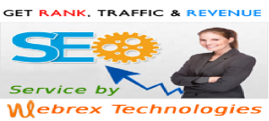naru 1 300x135 Explore reliable and affordable SEO services to let your business grow by Webrex Technologies