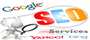 naru 300x135 Explore reliable and affordable SEO services to let your business grow by Webrex Technologies