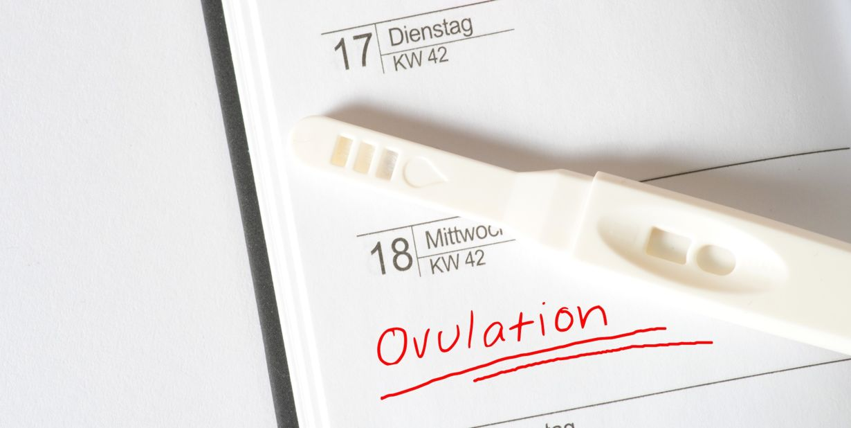 492 Ovulation kit Learn How to Track Your Fertility